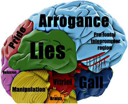 How the brain reveals if someone is lying